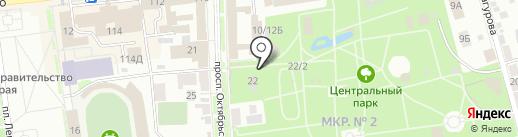 33 пингвина на карте Ставрополя