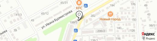 Кедровая Здравница на карте Михайловска