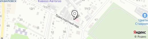 Михайловская участковая ветеринарная лечебница на карте Михайловска
