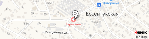 Молодежный на карте Ессентукской