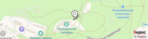 Лиана на карте Железноводска