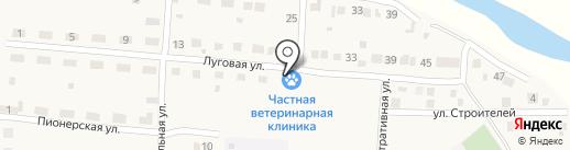 Ветеринарная клиника на карте Загорского