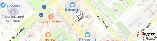 Багира на карте Георгиевска