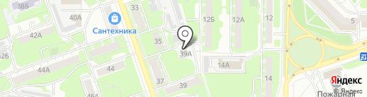 Какаду на карте Дзержинска