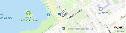 Синяя птица на карте Нижнего Новгорода