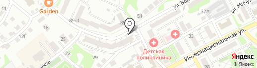 Доктор Zoo НН на карте Бора