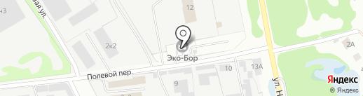Эко-Бор на карте Бора
