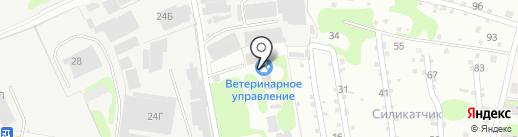 Борский ветеринарный участок на карте Бора