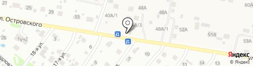 Магазин продуктов на карте Бора