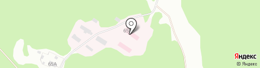 Противотуберкулезный диспансер на карте Бора