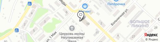 Большепикинская библиотека на карте Бора