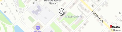 Сеть аптек на карте Бора