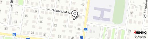 Колибри на карте Кстово