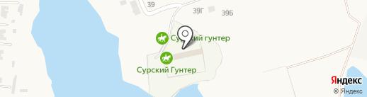 Сурский Гунтер на карте Богословки