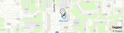 Сеть аптек на карте Пензы