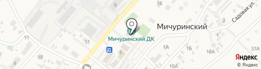 Мичуринский поселенческий центр культуры и досуга на карте Мичуринского