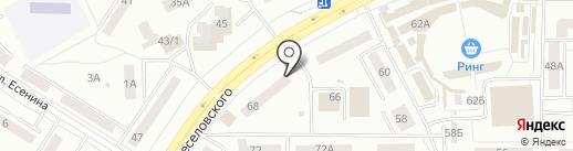Светлана на карте Саранска