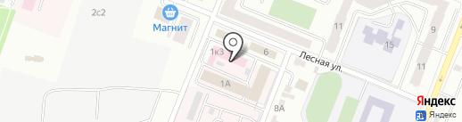 Республиканская дезинфекционная станция на карте Саранска