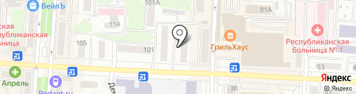Тюльпан на карте Саранска