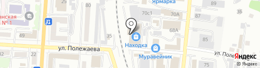 Мойдодыр на карте Саранска