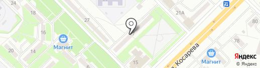 Стрекоза на карте Саранска