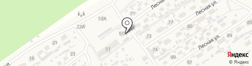 QIWI на карте Сосновки