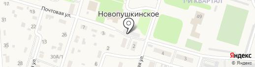 ФАРМВОЛГА на карте Новопушкинского