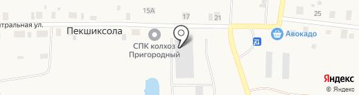 Колхоз Пригородный, СПК на карте Пекшиксолы