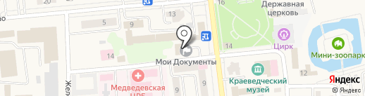 Оливия на карте Медведево