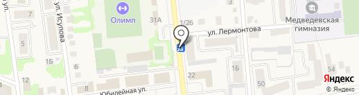 Профиль-М на карте Медведево