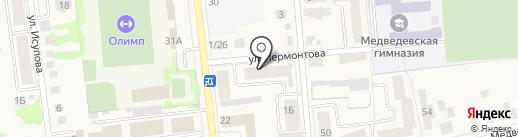 Гвоздь на карте Медведево