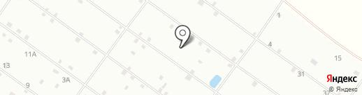 Лисса на карте Тобольска