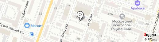 Цитрус на карте Йошкар-Олы