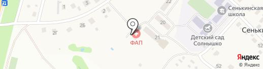Сенькинский фельдшерско-акушерский пункт на карте Сенькино