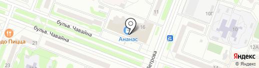 ZEBRA на карте Йошкар-Олы