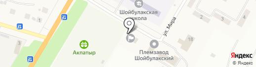 Администрация Шойбулакского сельского поселения на карте Шойбулака