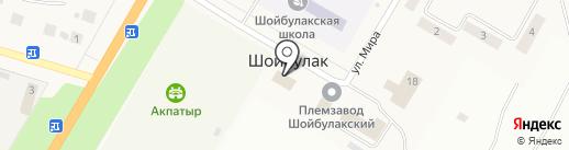 Почтовое отделение на карте Шойбулака