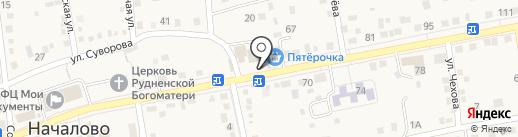 РЕНА на карте Началово