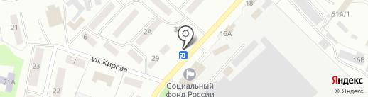 Резеда на карте Волжска