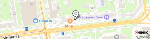 300 лошадей на карте Ульяновска