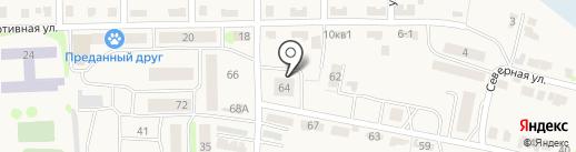 СТН, МУП на карте Васильево