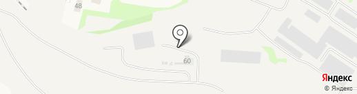 Ирбис на карте Васильево
