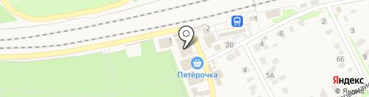 Зоомагазин на Привокзальной на карте Васильево