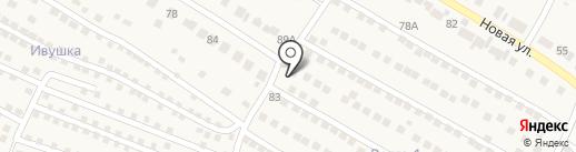 Продуктовый магазин на Советской на карте Васильево