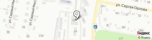 Бегемотик на карте Ягодного