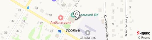 Библиотека на карте Усолья