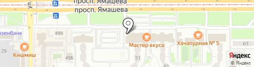 Зебра на карте Казани