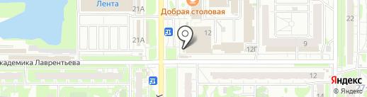 Колибри на карте Казани