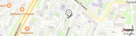 Пингвин на карте Казани