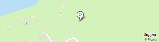 Сосновый бор на карте Большой Рязани